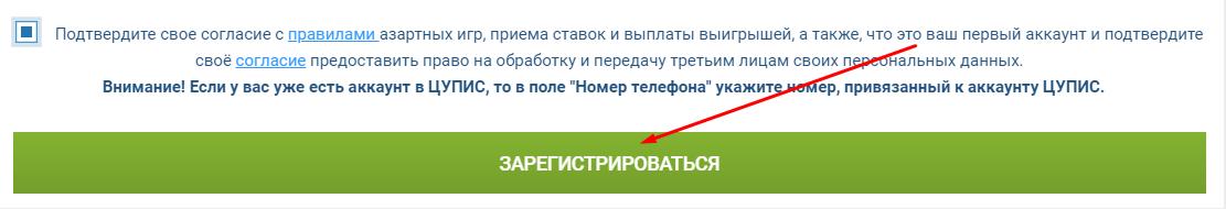 """Последний шаг: нажать кнопку """"Зарегистрироваться"""""""